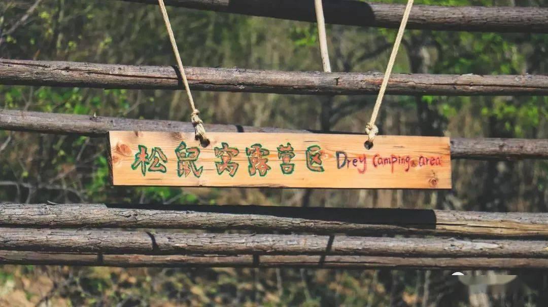 没想到又发现了一些京郊好去处!遛娃遛狗,乡趣野餐,敢说第一个你就没玩过