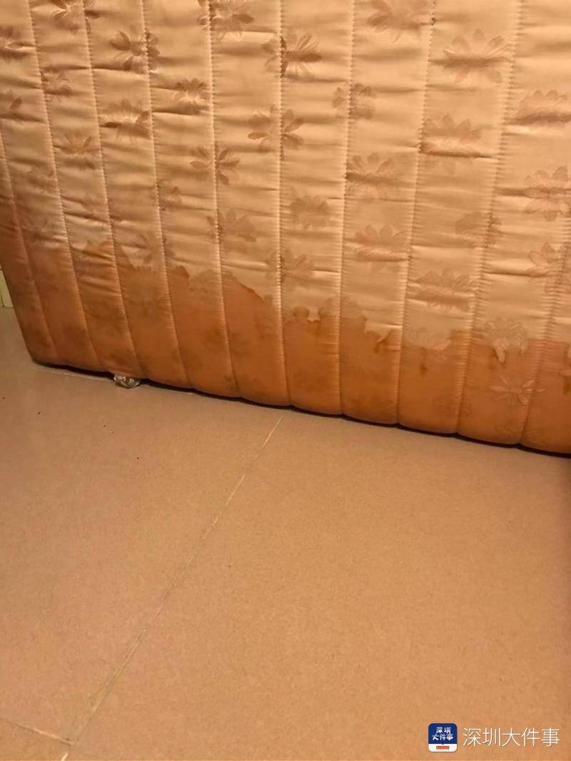 深圳一楼栋水管爆裂致一茶庄被淹,雇主称价钱百万元茶叶受损