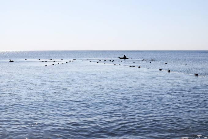美俄,黑海跟踪!