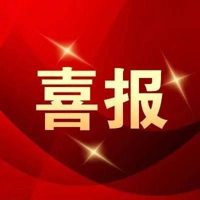 优秀!北大荒集团连续20年跻身中国企业500强!