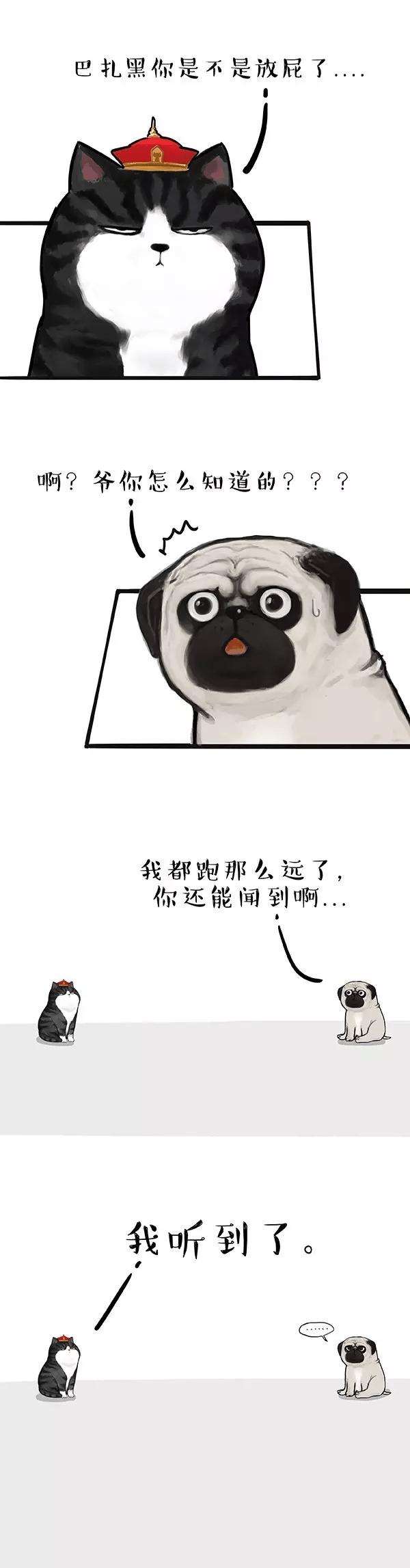 吾皇:猫到底是个什么玩意儿(漫画)_人类