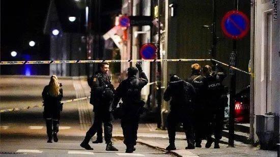 罕见!挪威警方允许当地警察佩枪执法!
